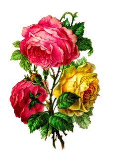 scrapbooking flower image