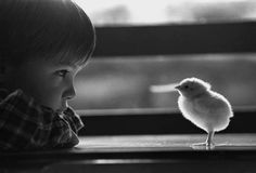 True friends come in all sizes, shapes, and colors.