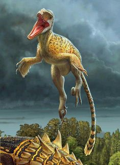 Utahraptor ostrommaysorum jumps onto the back of the armored dinosaur Gastonia burgei by Sergey Krasovskiy Dinosaur Fossils, Dinosaur Art, The Good Dinosaur, Raptor Dinosaur, Dinosaur Skeleton, Dinosaur Images, Dinosaur Pictures, Feathered Dinosaurs, All Dinosaurs
