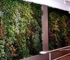 Disponer de un jardin vertical artificial es, en estos momentos, una de las propuestas más sugerentes para desarrollar un espacio natural de gran belleza estética en la vivienda, la casa de campo o, incluso, el centro de trabajo. Hasta el punto de que cualquier espacio puede transformarse en un jardín vertical. Se trata de muros