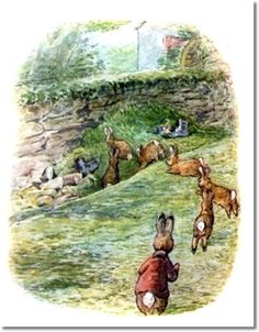 The Tale of The Flopsy Bunnies - 1909 - Flopsy Bunnies Head to McGregors Trash Heap