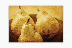 Ready-to-hang wrapped canvas print of three rustic pears, large rustic kitchen food wall art print on canvas, sizes 5x7 to 30x40. Title: Autumn Harvest Canvas prints are professionally-stretched onto