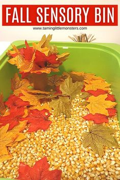 Create a super easy sensory bin with corn and Fall leaves. Toddlers and preschoolers will love exploring this Autumn themed activity.  #fall #autumn #sensory #toddler #preschool