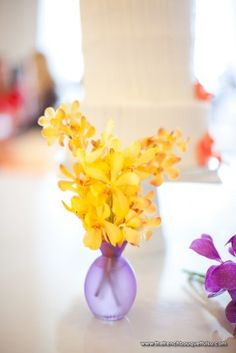 orchids in yellow XO