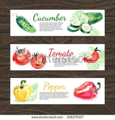 Watercolor and sketch vegetables organic food horizontal banner set. Design with cucumber, tomato and peppers. Vector illustration - stock vector