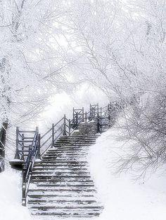 Wondrous White snowy stairs
