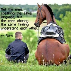 Not the ones speaking the same language, but ones sharing the same feeling understand each other. ~ Rumi