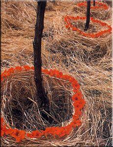 Land art by Strijdom van der Merwe  http://www.strijdom.co.za/