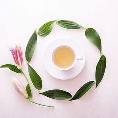 [ユリと紅茶]  いつもの花屋さんを覗いたら、 「今日は、新鮮なユリをたくさん仕入れましたよ」と薦めていただきました。  お部屋の中が甘い香りで満たされています。  白百合と迷ったけれど、今日はピンクな気分。  #ティータイム #おうちカフェ #お茶の時間 #花のある生活 #ゆり #暮らし #紅茶 #植物のある暮らし #floweroftheday #pink #flower #tv_stilllife#still_life_gallery #flowerslovers  #prettiestpastels #pastelsquares  #ihaveathingwithpastels #ihavethisthingwithprettypics