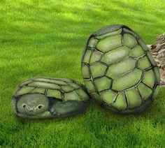 Painted turtle rocks