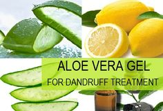 Do you have dandruff and itchy scalp problem? Then you can try aloe vera here is a post on How to Use Aloe Vera Gel for Dandruff faster at home naturally