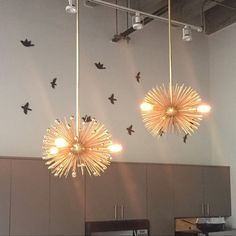 High End, Colorful Chandeliers, Pendants, And Sconces. By DuttonBrown