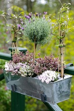 Galvanized planter box
