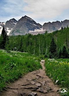 Trail near Maroon Lake - Aspen, Colorado