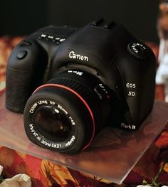 Canon Camera Groom's Cake lacey