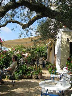 Kastro Café, Peratata, Kefalonia, Greece  - pretty garden, fab cakes!