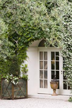 french doors & ivy