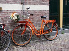 orange bike bicycle