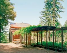 Olle Lundberg's Sonoma Escape | Apartment Therapy