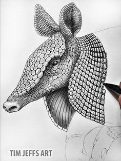 Progress 1 pic of my Armadillo. Drawing with a Tombow Zoom L105 ballpoint Pen