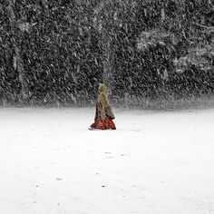 Figure photography, Nature photography, Red riding hood, Winter photography, Winter wonderland,  Print 6x6 (15x15cm) on Etsy, $17.98