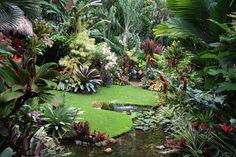 Insane Tricks Can Change Your Life: Tropical Garden Landscaping Patio garden landscaping fire pits. Balinese Garden, Bali Garden, Dream Garden, Tropical Garden Design, Tropical Landscaping, Backyard Landscaping, Exotic Plants, Tropical Plants, Tropical Gardens