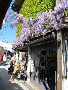 I can still smell the wisteria at the Paris flea market.