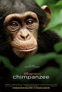 This delightful Disneynature documentary, narrated by Tim Allen and shot in the wilds of Africa's Ivory Coast, revolves around the adorable antics of a big-eared, infant chimp named Oscar. Co-directed by Alastair Fothergill and Mark Linfield, the film chronicles the little fellow's evolution from an overprotected momma's boy into a toddler suddenly forced into survival mode by circumstances beyond his control.