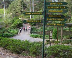 Mt Tambourine Botanical Gardens