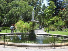 Cape Town, Fountain, Deck, Gardens, Outdoor Decor, Home, Front Porches, Outdoor Gardens, Ad Home