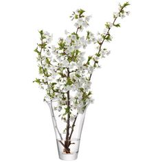 LSA Molten Flare Vase 28cm Clear (335 VEF) ❤ liked on Polyvore featuring home, home decor, flowers, fillers, plants, decor and lsa international