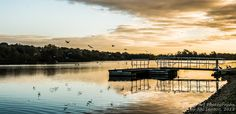 """This image of birds at dawn at Whitlingham Broad in Norfolk won a """"highly commended"""" award in the Societies October competition under the Pictorial & Fine Art section"""