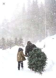 walking in the snow , how to stay healthy during the holidays