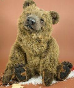 Категория 7 Медведи и почки Мишка Журнал