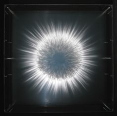 Installations by David Spriggs