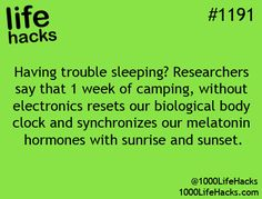 Would love to try this but 1) who can take a week off? 2) I can't sleep on the ground. (All I do is think about the movie The Ants and freak out)