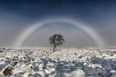 """Fog bow on Rannoch Moor - A stunning shot of a white """"fog bow"""" has been captured by a photographer over Rannoch Moor in the west of Scotland."""