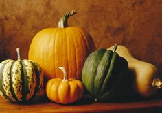 Discover different ways to prep and cook winter squash. Autumn brings a medley of winter squash to grocery stores and farmers' markets. Eye-catching as cente. Harvest Soup Recipe, Pumpkin Photos, Fresh Bread, Mo S, Organic Vegetables, Painted Pumpkins, Fall Harvest, Baking Tips, Soup Recipes