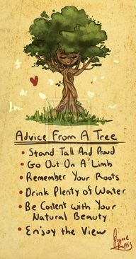 Be like a tree (except for the non moving part ;))