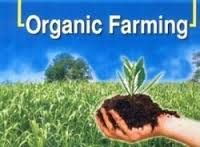 Are the Food We Eat Free from Pesticides and other Poisons? Growth Hormone, Organic Farming, Nutrition Education, Livestock, Environment, Around The Worlds, Herbs, Plants, Food