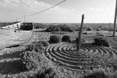 Stuart Franklin England. Kent. Dungeness. 2017. Derek Jarman's garden at Prospect Cottage. Stuart Franklin, Vineyard, England, Outdoor, Outdoors, Outdoor Games, United Kingdom