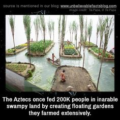 The Aztecs once fed 200K people in inarable swampy land by creating floating gardens they farmed extensively.