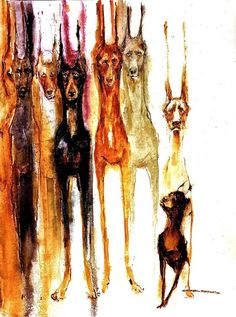 Dobermans...  Have to do/find this with a Great Dane!