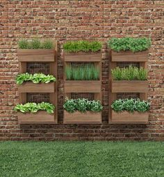 Vertical Gardens - Once you've designed your garden, pick the plants that you want to grow during each season. There's no better solution than to bring a vertical garden. While arranging a vertical garden… Vertical Herb Gardens, Vertical Garden Diy, Outdoor Gardens, Vertical Planter, Outdoor Wall Planters, Herb Planters, Small Garden Vegetable Patch Ideas, Vegetable Gardening, Vertical Garden Vegetables