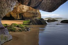 Sea Caves - Ghosties Beach, Munmorah State Conservation Area, Central Coast, NSW, Australia