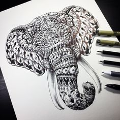 """""""Elephant Head"""" from 2014. Had lots of fun drawing this piece. Wish I drew it much larger. It's only 11 x 14 inches."""