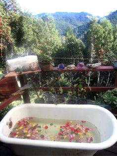 Hippie & naturiste