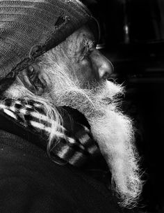 Wisdom has a long white beard © Salvador San Vicente. S)