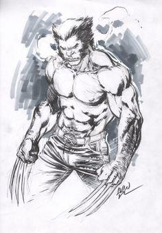 Wolverine by Ivan Reis