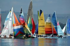 Lots of water sports - every year the Midmar Mile swim - all ages all abilities from a wide area . Sailing Yachts, Catamaran, Midland Meander, Private Games, Kwazulu Natal, Sailing Outfit, Out Of Africa, Game Reserve, Set Sail